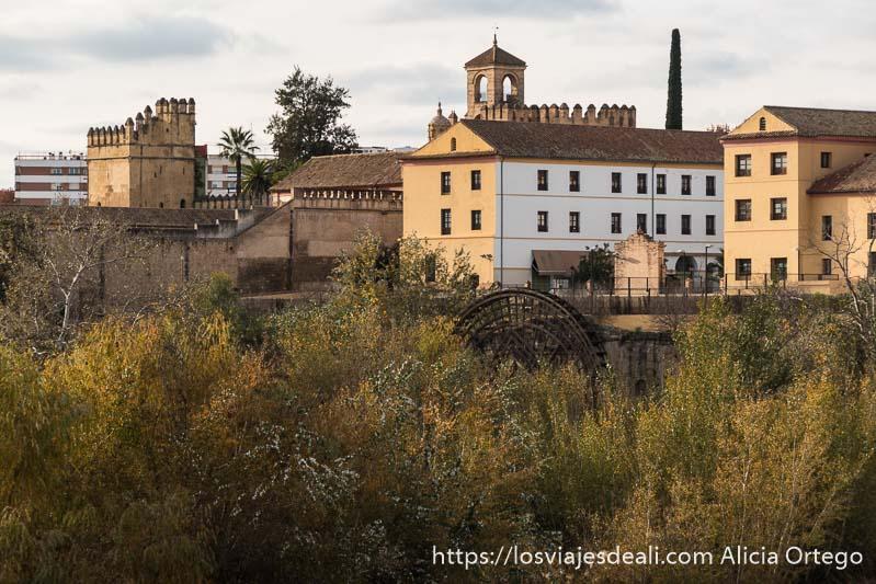 árboles, antigua noria árabe y murallas y torre del alcázar al fondo