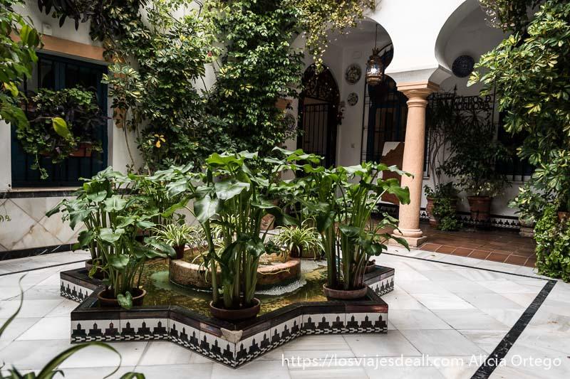 uno de los patios de córdoba con fuente en el centro en forma de estrella con azulejos árabes en la base y plantas verdes
