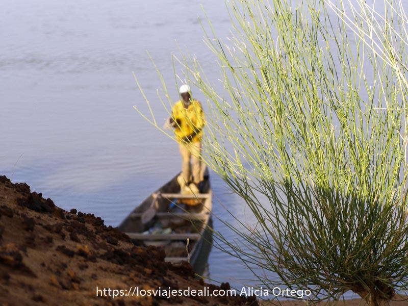 hombre con camisa amarilla de pie en una barca del río níger desenfocado, detrás de planta verde enfocada