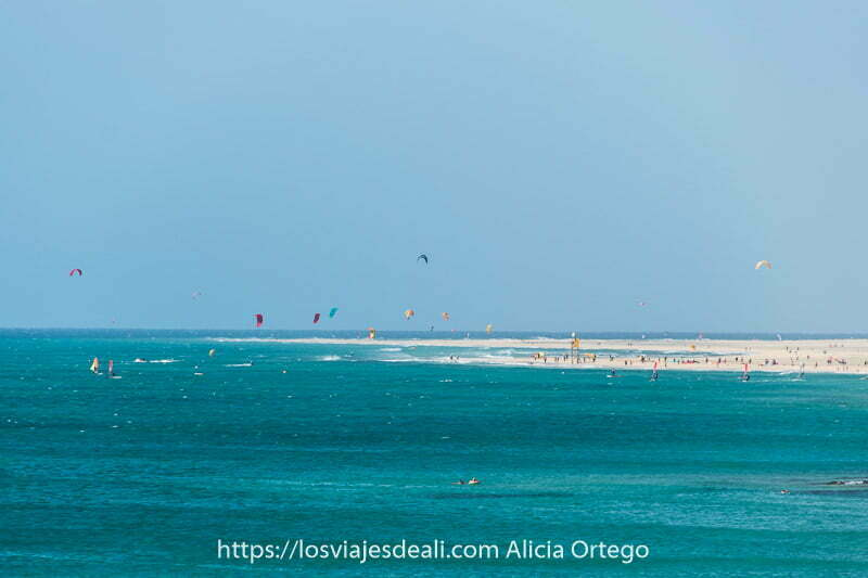 playa de costa calma con muchas velas de kitesurf