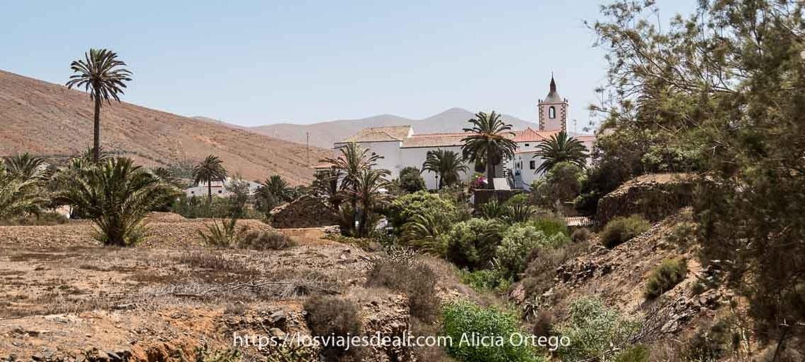 valle de betancuria con iglesia blanca y palmeras alrededor