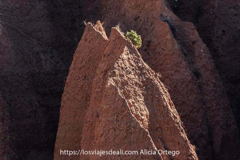 detalle de las cárcavas de una especie de torre de arcilla con bordes afilados y un matorral verde en la parte más alta