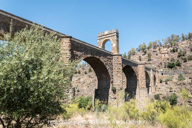 puente de alcántara entre vegetación con arco con almenas en parte superior