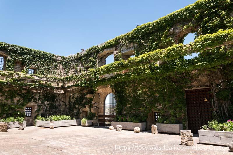 patio del convento con paredes llenas de hiedra