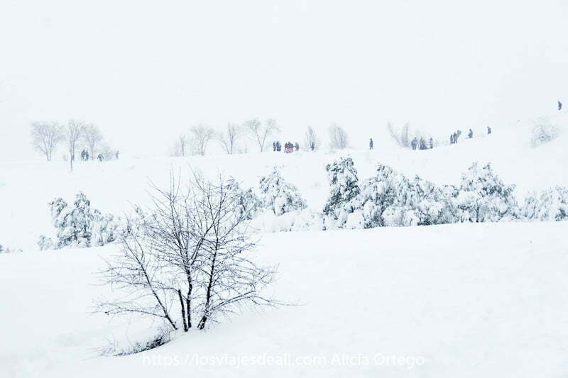 paisaje blanco con personas en la parte superior de una colina y algunos árboles sin ramas
