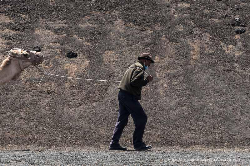 camellero guiando a su camello del que se ve la cabeza a la izquierda de la foto guiado con una cuerda