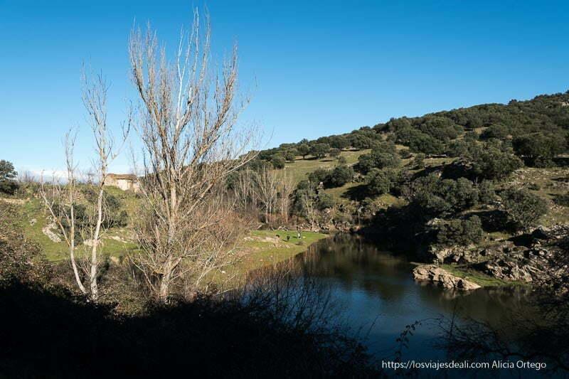 río lozoya con monte al lado y bosquecillo de carrascas