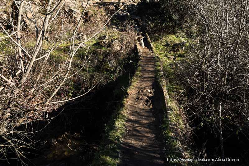 puente de cemento cubierto de musgo para cruzar el río lozoya y subir al mirador