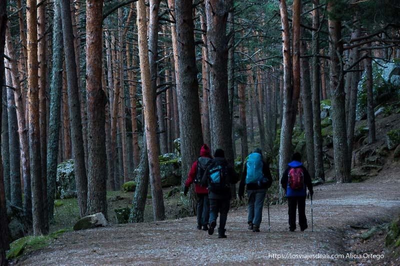 excursionistas andando por la pista del puerto de canencia
