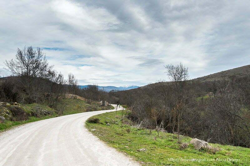 camino entre prados y árboles sin hojas con picos con nieve al fondo