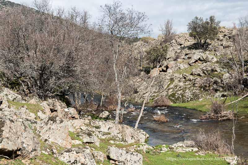 arroyo de canencia con orillas llenas de piedras de granito y árboles