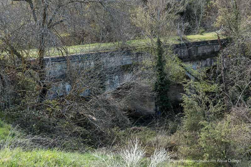 puente tipo acueducto medio oculto por la vegetación muy cerca de la Cascada del Hervidero