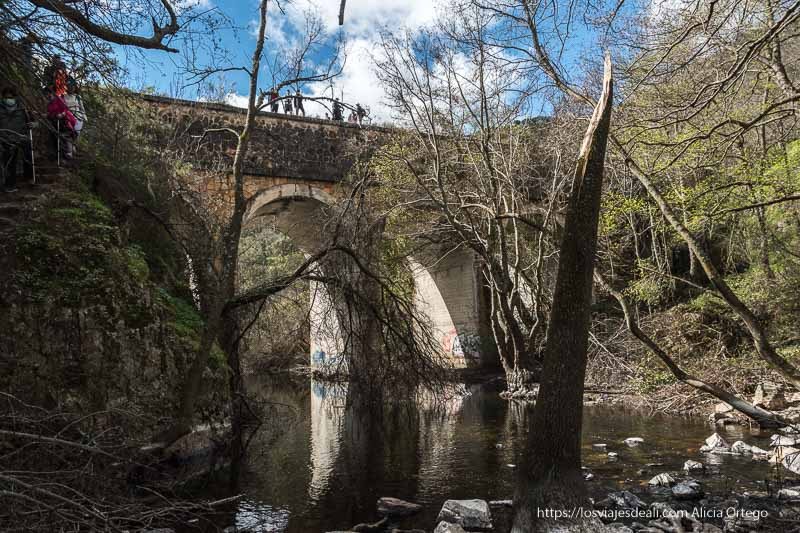 vista del puente junto a la cascada desde abajo, con árboles partidos por el invierno