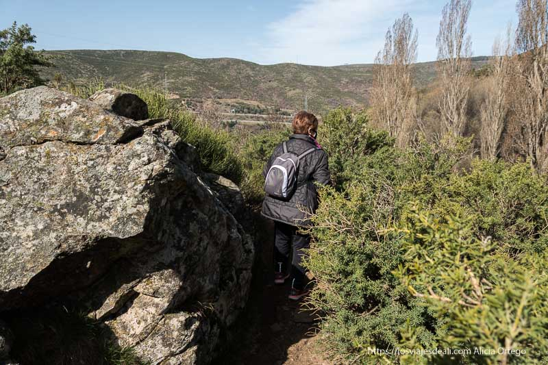 andando por el sendero entre arbustos de jara y grandes rocas de granito de camino a la chorrera de los litueros