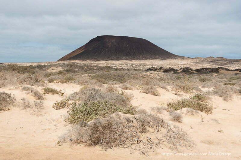 volcán de La Graciosa con extensión de dunas y matorrales delante