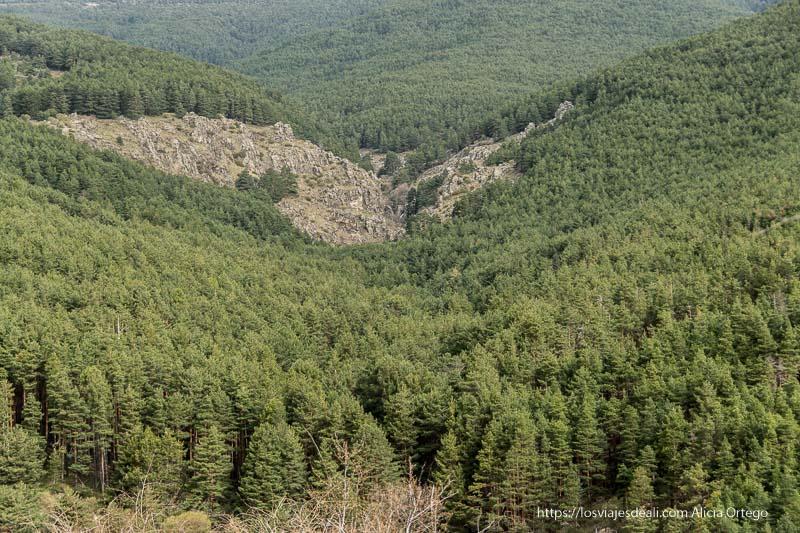 montaña con desfiladero del cancho litero rodeado de pinares