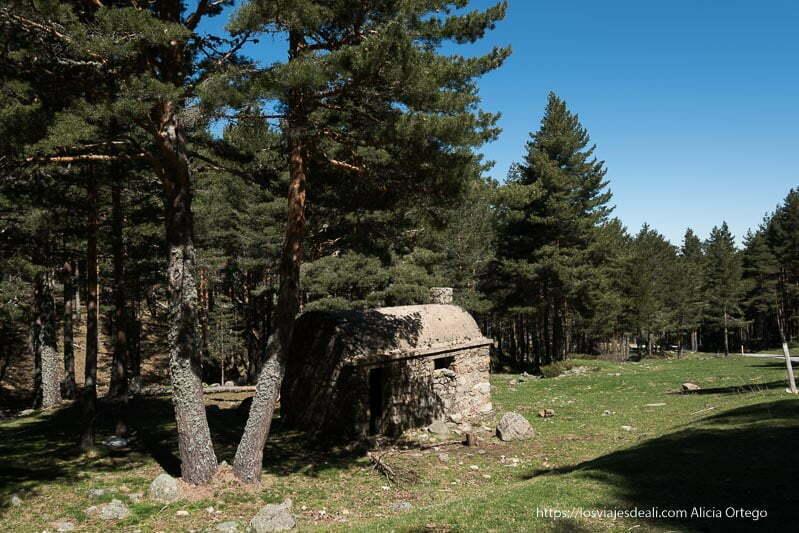 refugio de piedra con techo abovedado junto a pequeño prado y grandes abetos