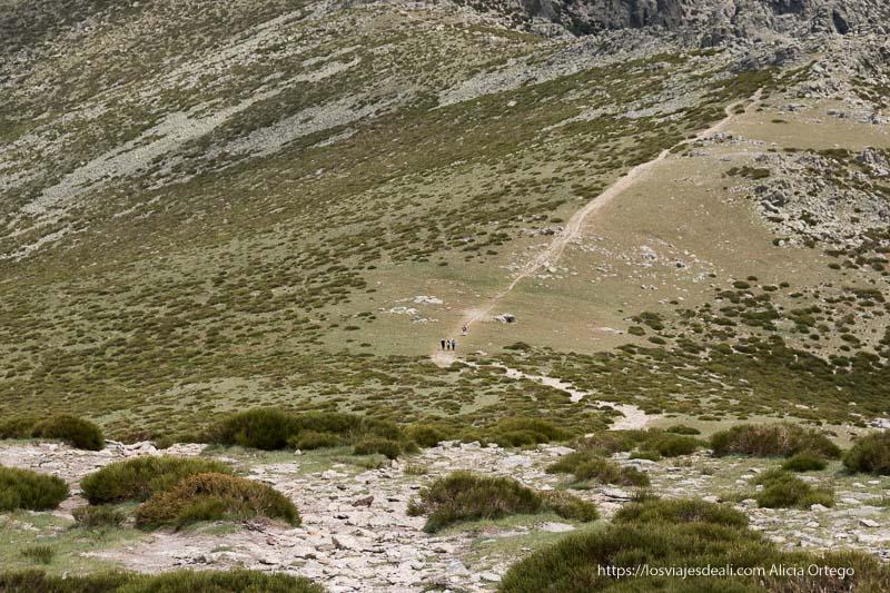 vista del camino desde arriba con varias personas caminando entre prados
