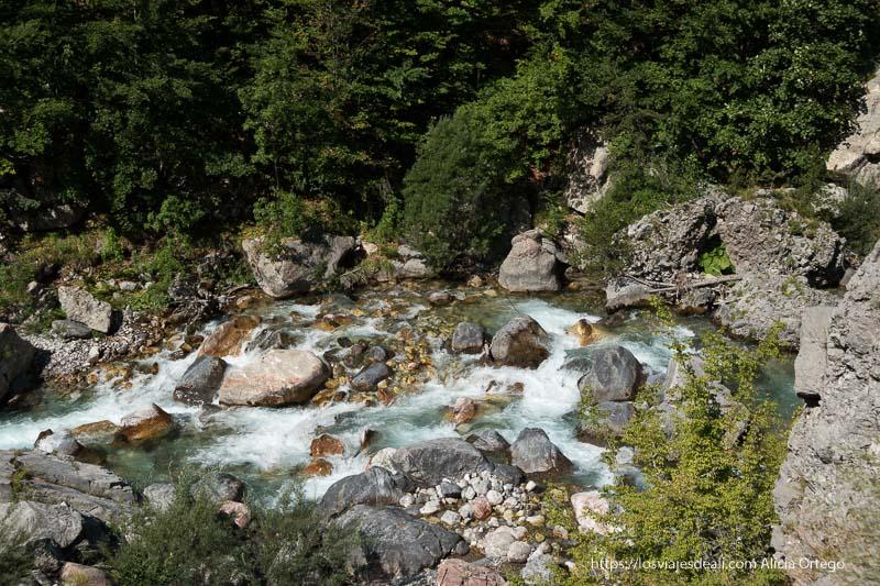 arroyo con agua cayendo entre las rocas y vegetación alrededor