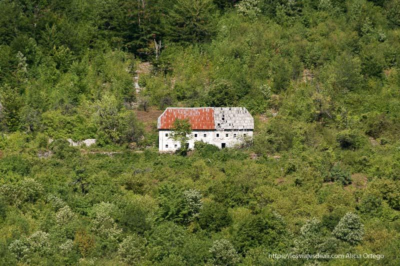 casa grande con tejado rojo y gris en medio de los árboles
