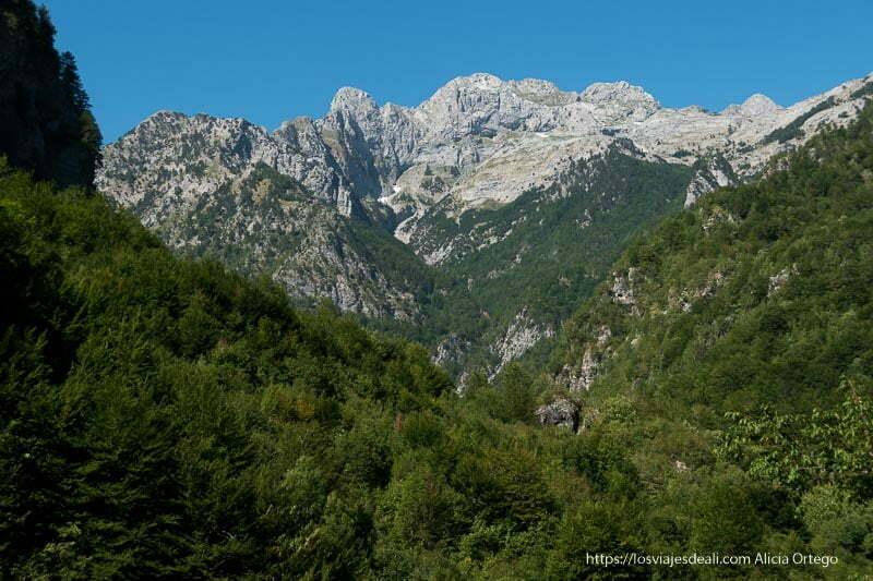 valle en forma de uve con bosques verdes y montañas muy altas con picos de roca