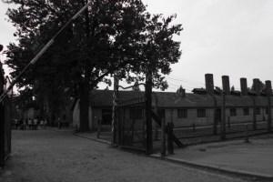 Conocer Auschwitz