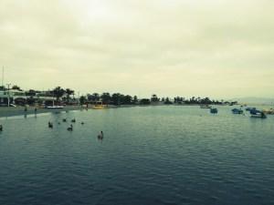 Islas Ballestas | Que ver en Paracas