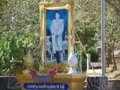 phuket (65)