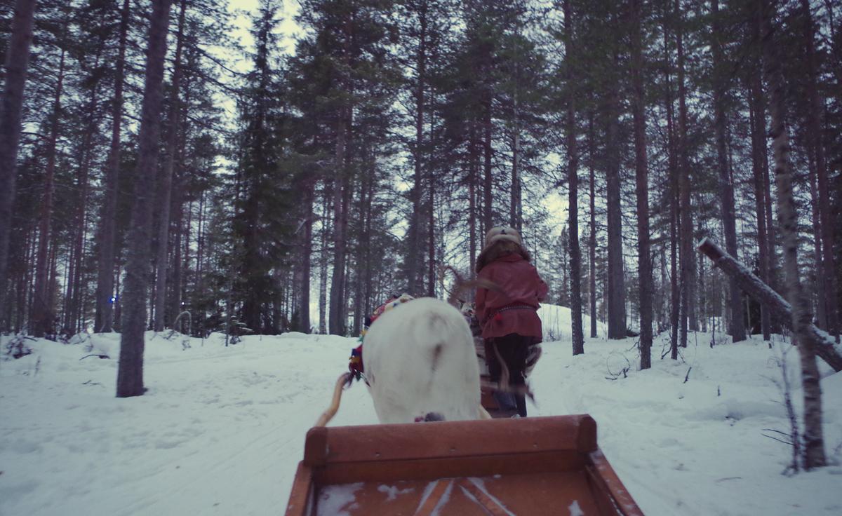 Rovaniemi, soñando despierta.