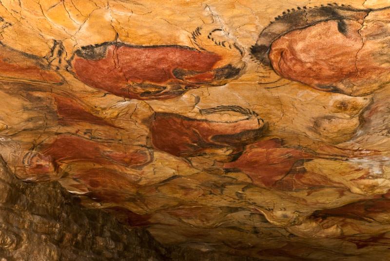 -Conjunto de bisontes en el museo de Altamira, Santillana del mar-