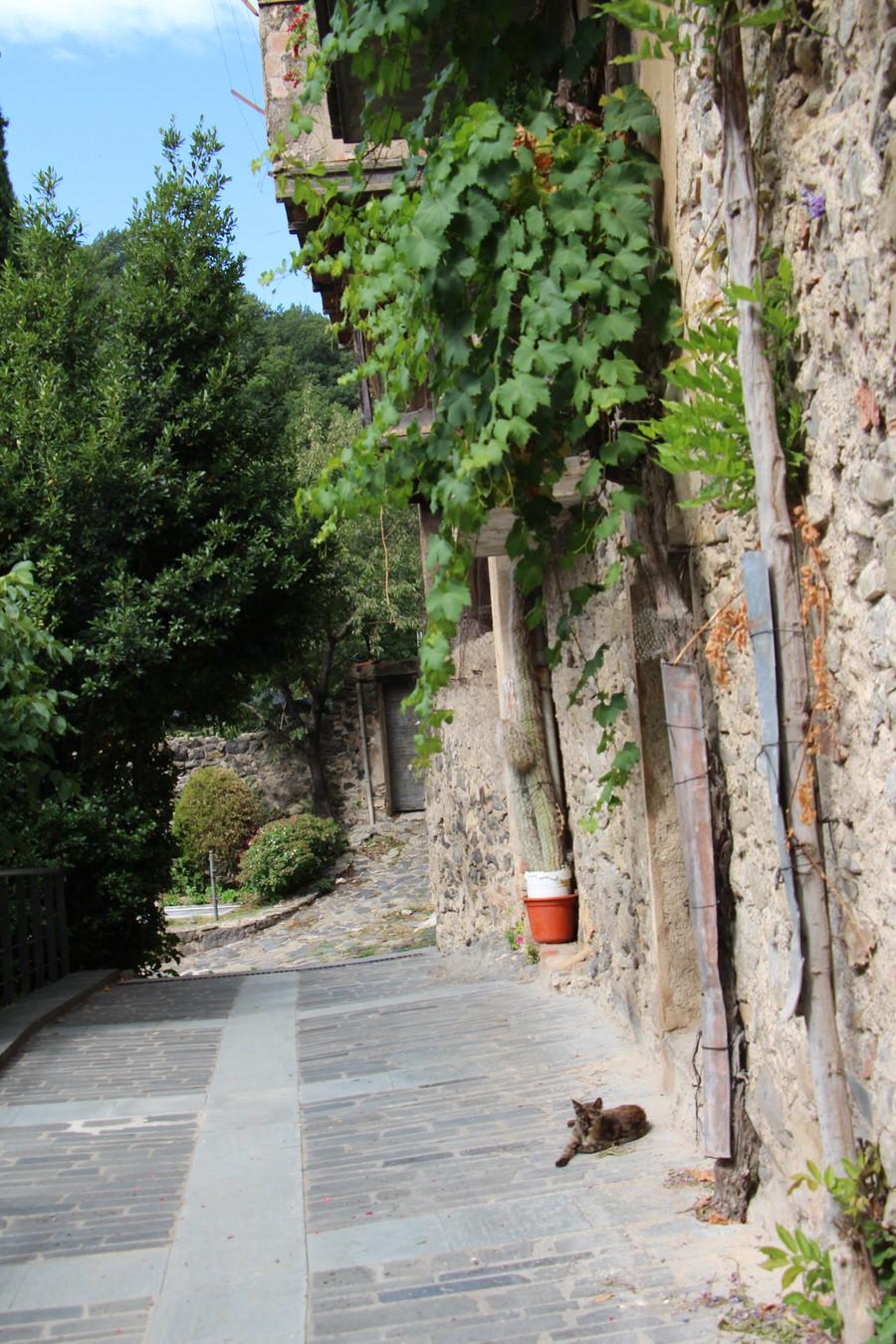IMG_4446.JPG  -Camino junto a la iglesia hacia la pasarela. Castellfullit de la Roca-
