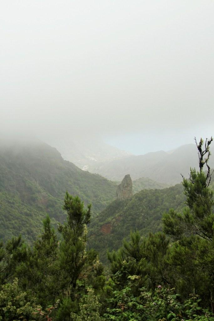 Mirador El Rejo con niebla
