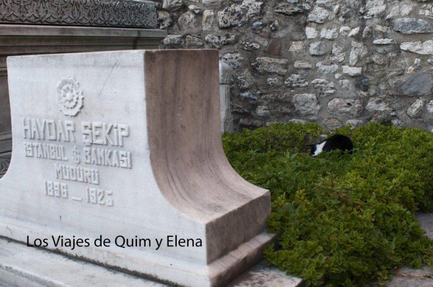 Turquia - Junto al Mausoleo Sultan II Mahmut