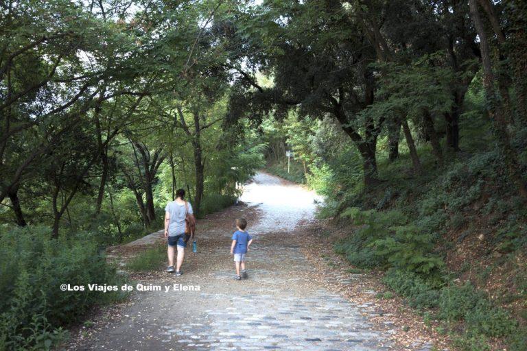 El camino que lleva a la Torre de Collserola