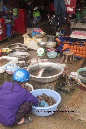 El pescado seguro que está fresco
