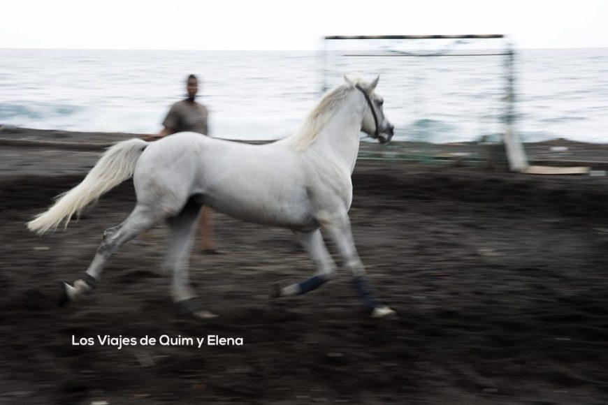 Trotando junto al mar en Vila das Pombas en el Valle de Paul