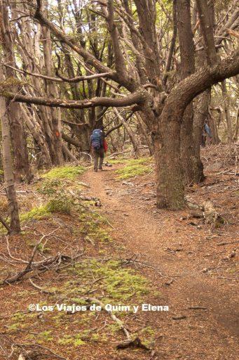 Sube que te sube en el Parque Nacional Torres del Paine