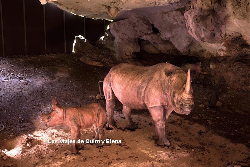 Cueva del Rinoceronte