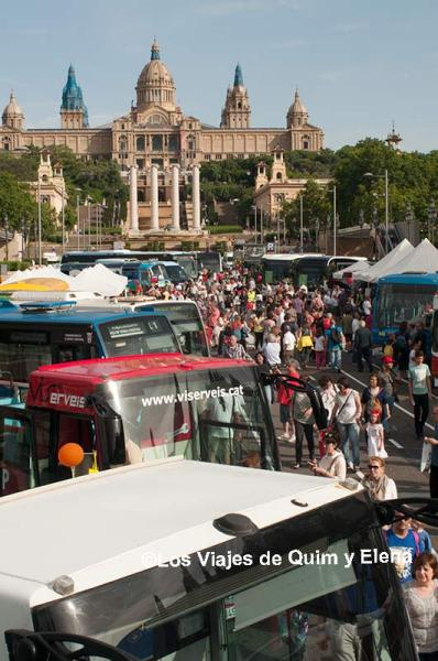 Exposición autobuses clásicos, autobuses de Barcelona