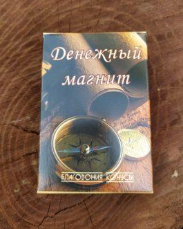 Денежный магнит конусы 10 шт.025