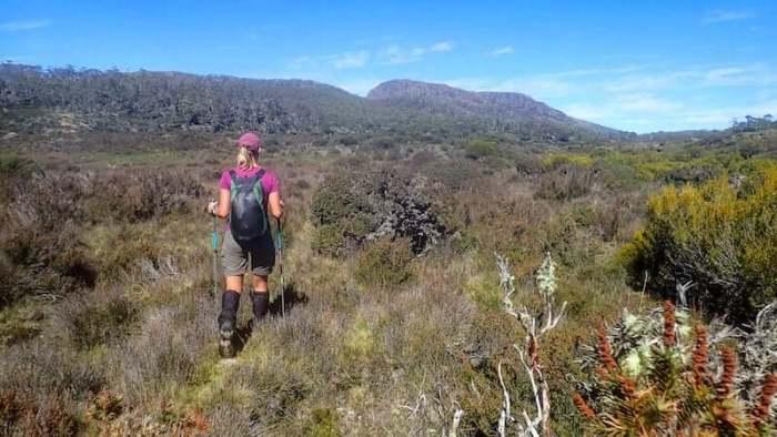 Woman hikes across Tasmanian plain with trekking poles