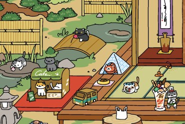 Photo of the Week: Cat Cafes