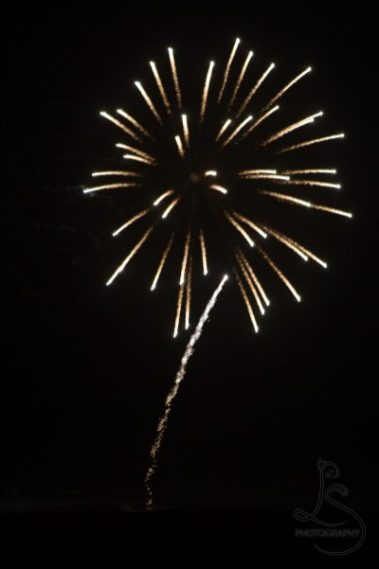 Yellow fireworks   LotsaSmiles Photography