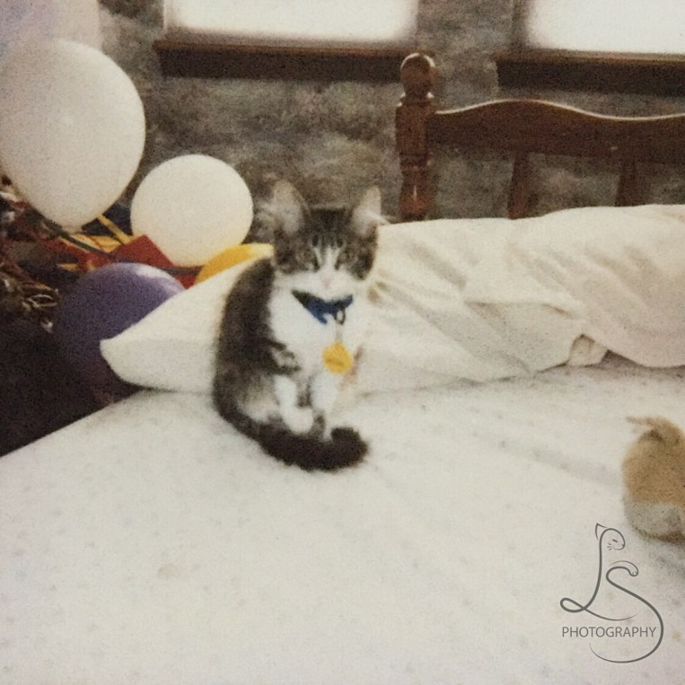 The very first picture I took (a polaroid) of Zoe