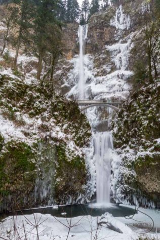 Multnomah Falls frozen in place