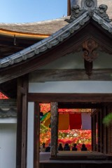 This temple doorway leads to a stunning autumn garden in Kyoto.
