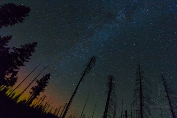 Starlight by Fire