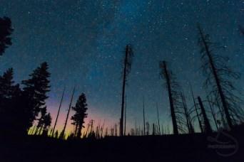 Oregon Northern Lights
