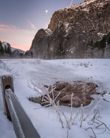 The moon sets over a chilly icy valley floor in Yosemite National Park   LotsaSmiles Photography