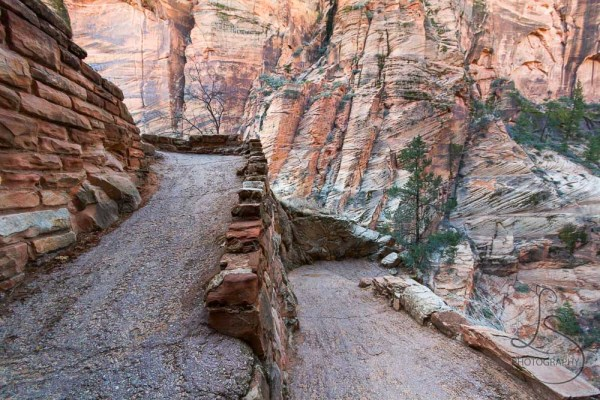 A switchback in the Angels Landing trail, viewed from a bend | LotsaSmiles Photography